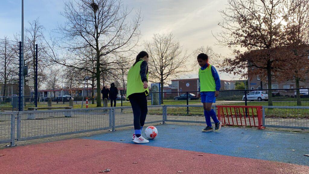 ASM training playgrounds